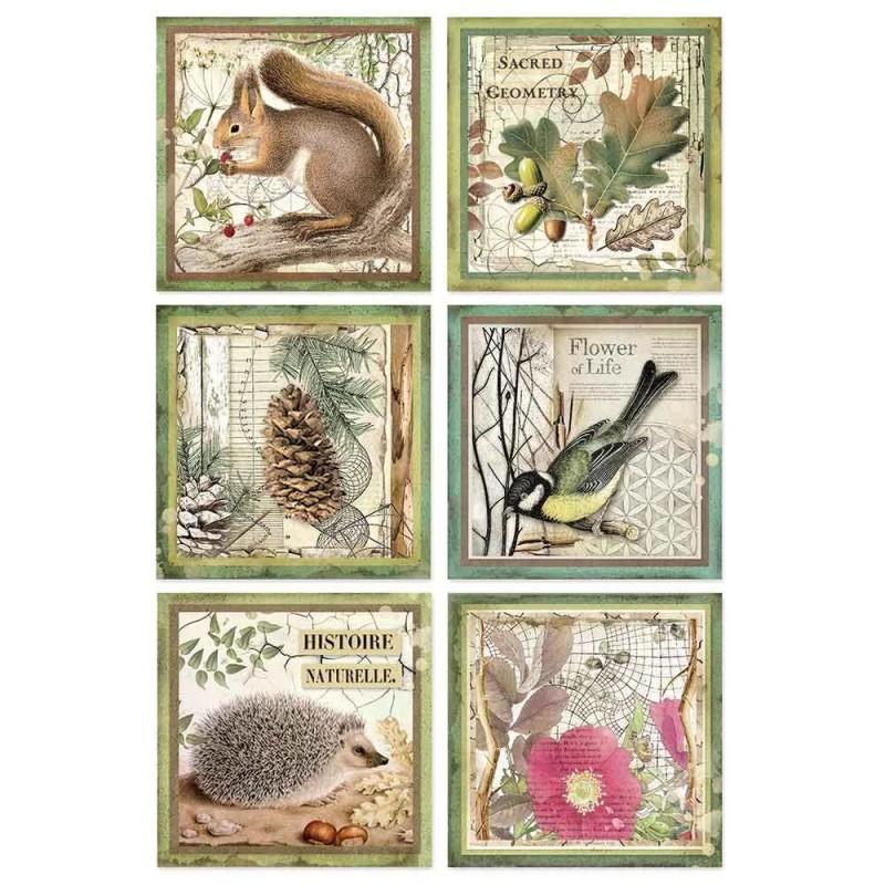 Riisipaperi Stamperia, A4-koko, Forest neliöt
