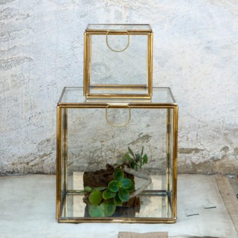 Dassie Display Box