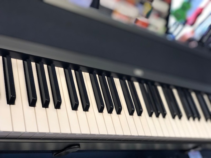 KORG B1-BK DIGITAL PIANO + MFB SOUND SYSTEM