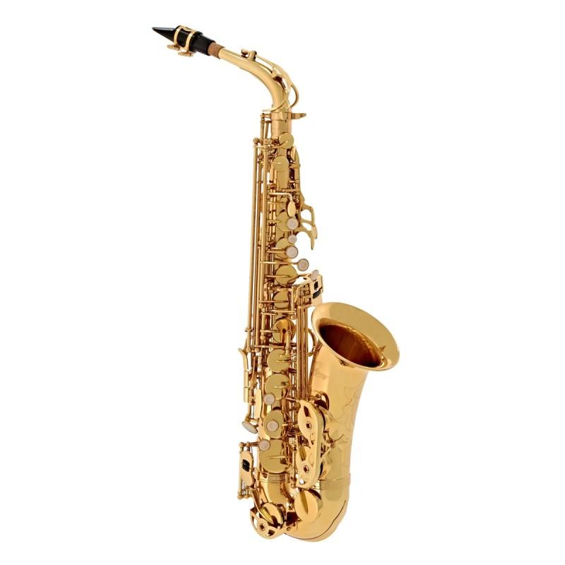 Odyssey Debut alto sax outift w' case