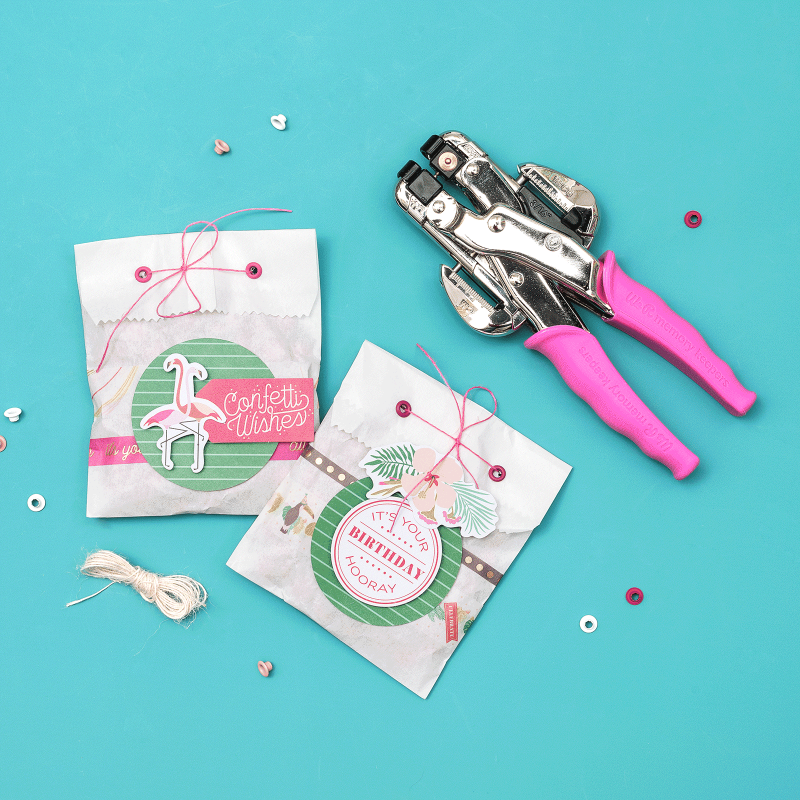We R Memory Keepers - Crop-A-Dile punch and pink case