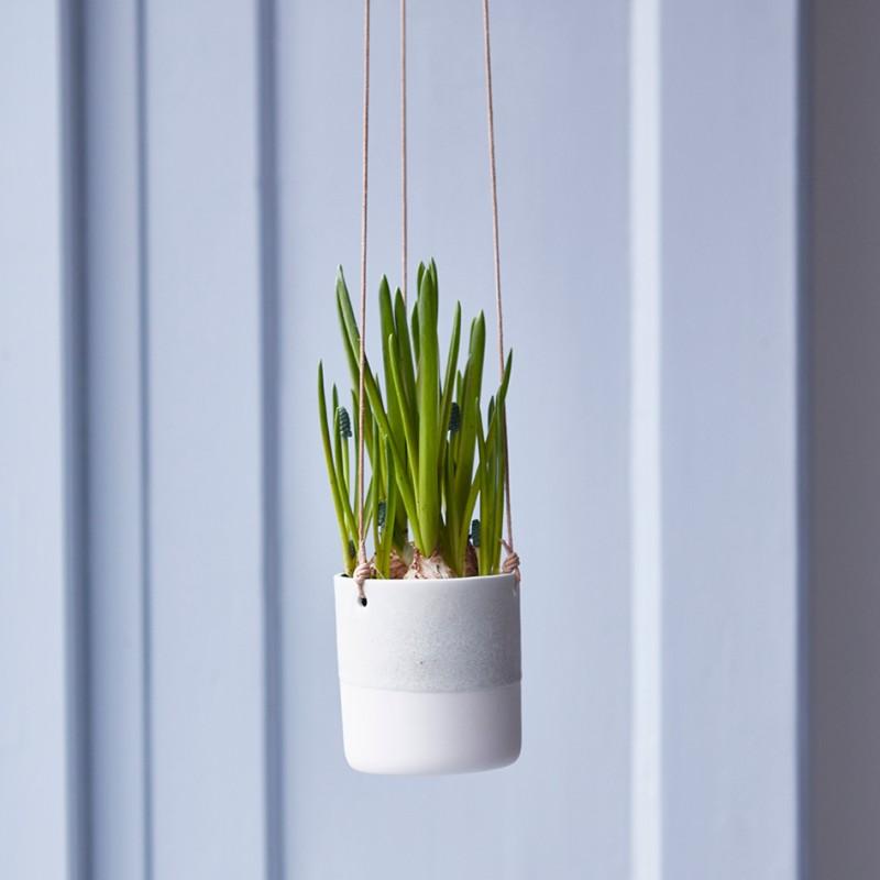 Small Hanging flowerpot