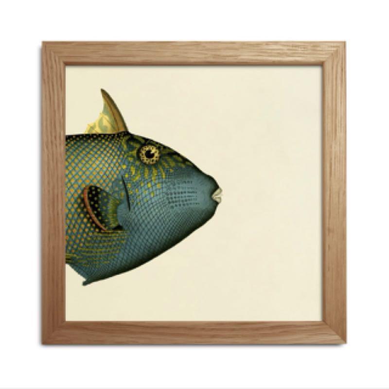 Fish Split x2
