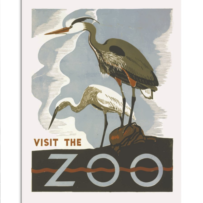 poster Visit the ZOO