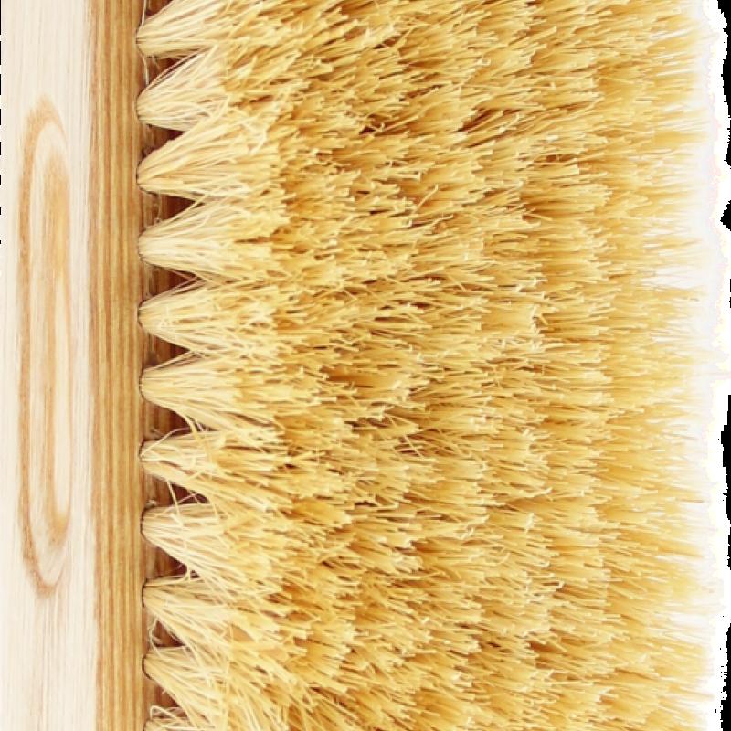 TEK Bath brush with natural tampico bristles (hard) 4536