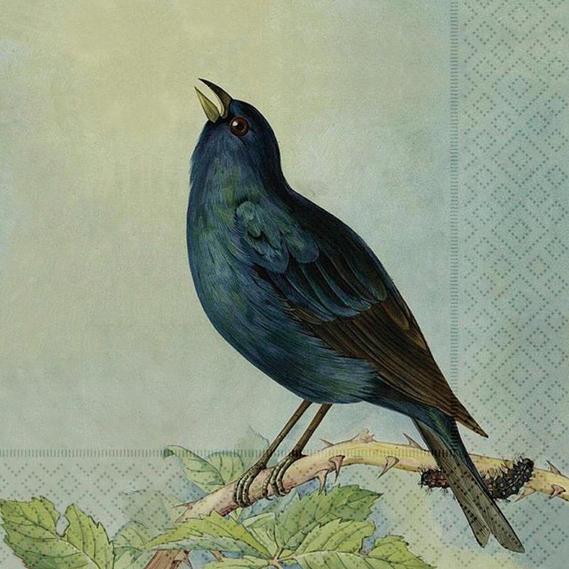 Sköna Ting - Servetter Fåglar
