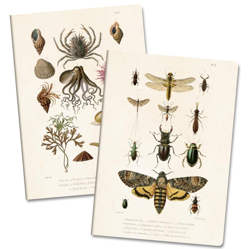 Sköna Ting - Anteckningsbok Insekt/Havstema