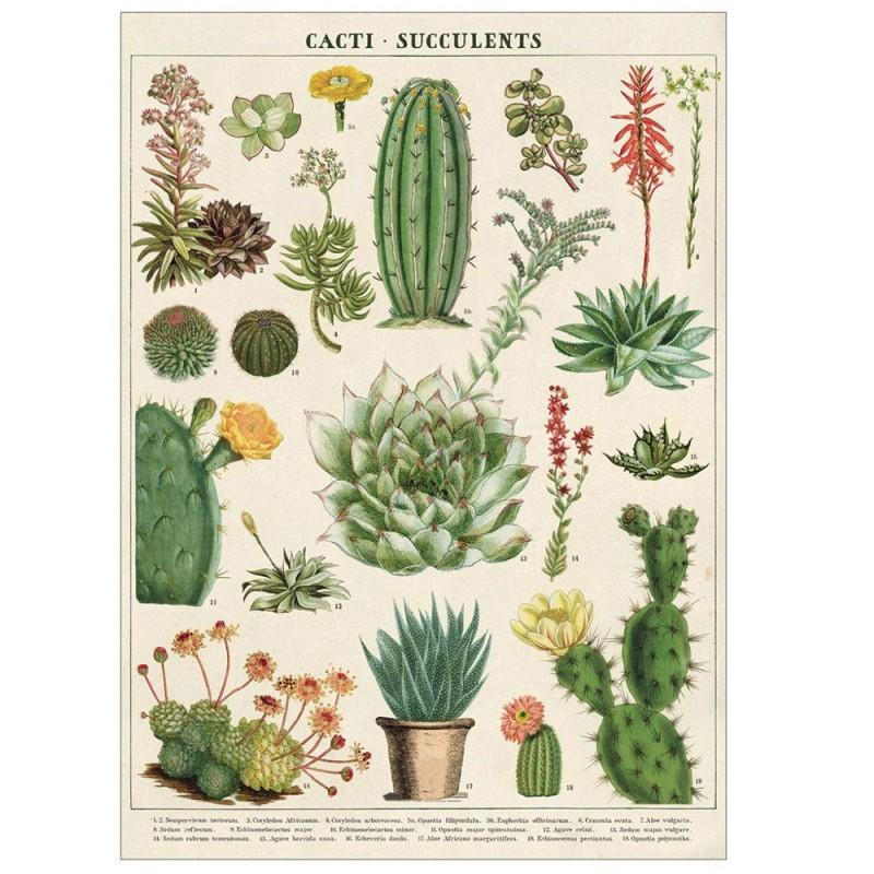 Cavallini Papers - Kökshandduk Kaktus