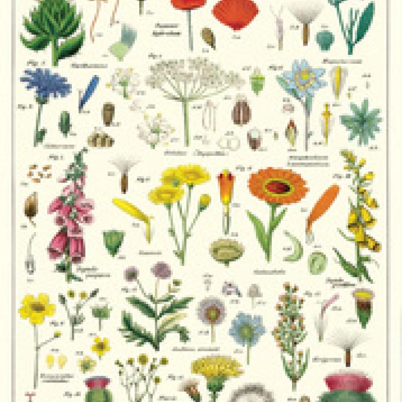 Cavallini Papers - Kökshandduk Blommor