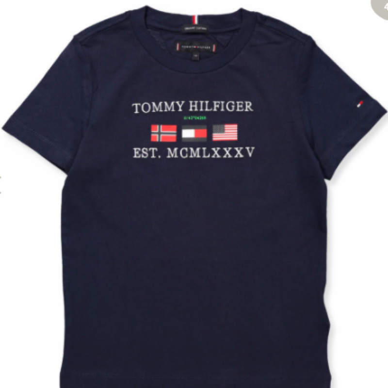 Tommy Hilfiger Organic Navy T-shirt