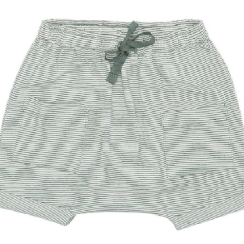 Soft Gallery Flair shorts