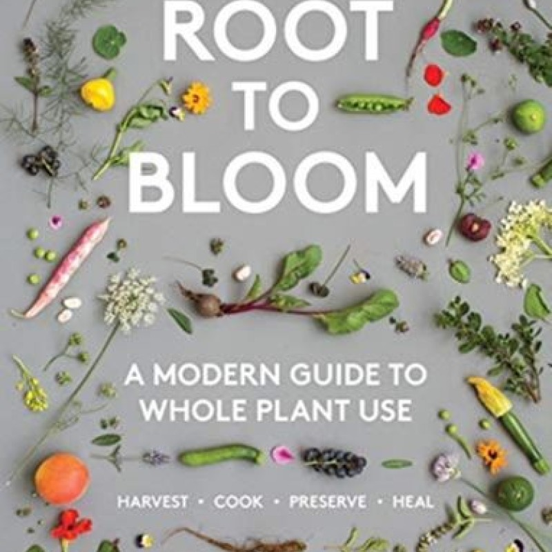 Root To Bloom | Mat Pember