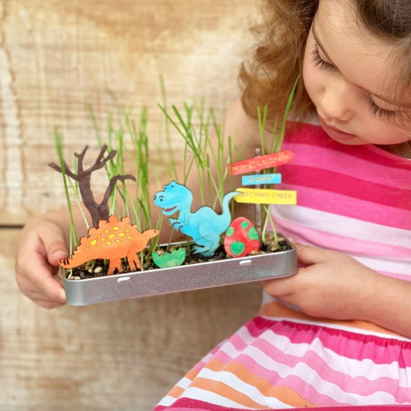 MAKE YOUR OWN DINOSAUR GARDEN KIT by Cotton Twist