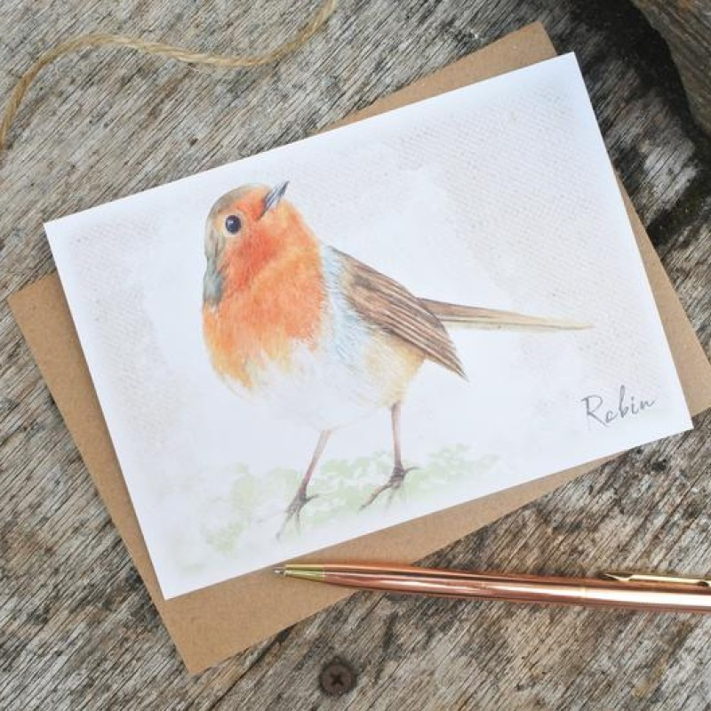 Robin Postcard By Miss Meaney's