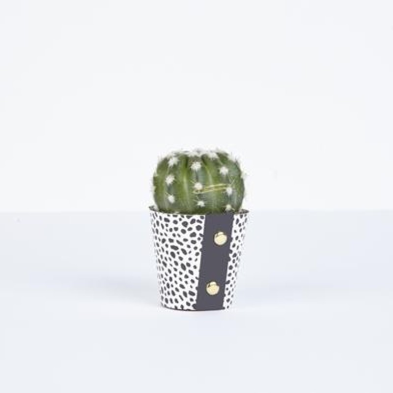 Extra Small Plant Pot Cover by Studio Wald