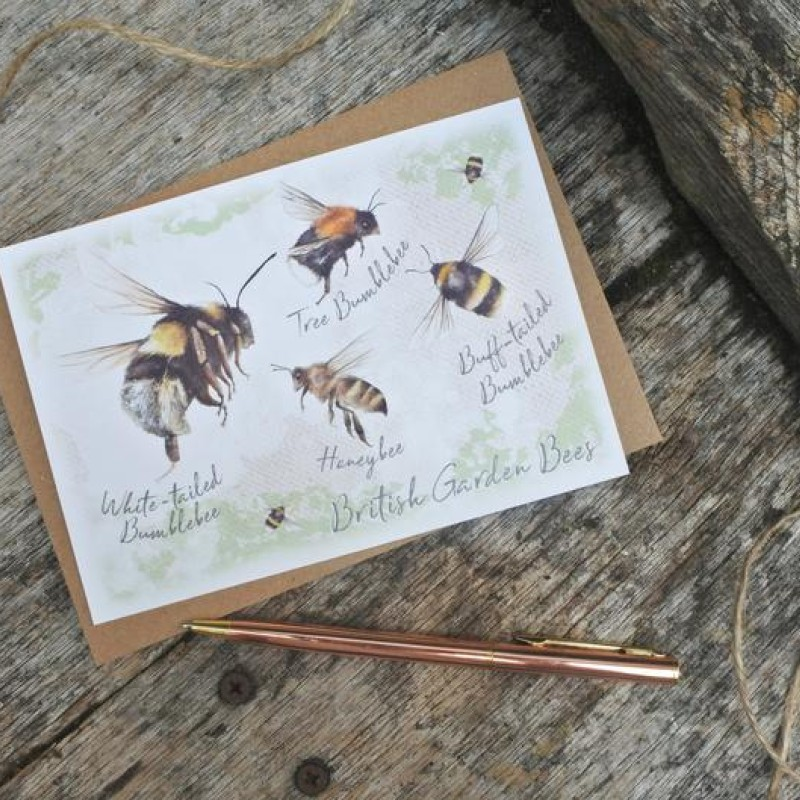 Bee Postcard By Miss Meaney's