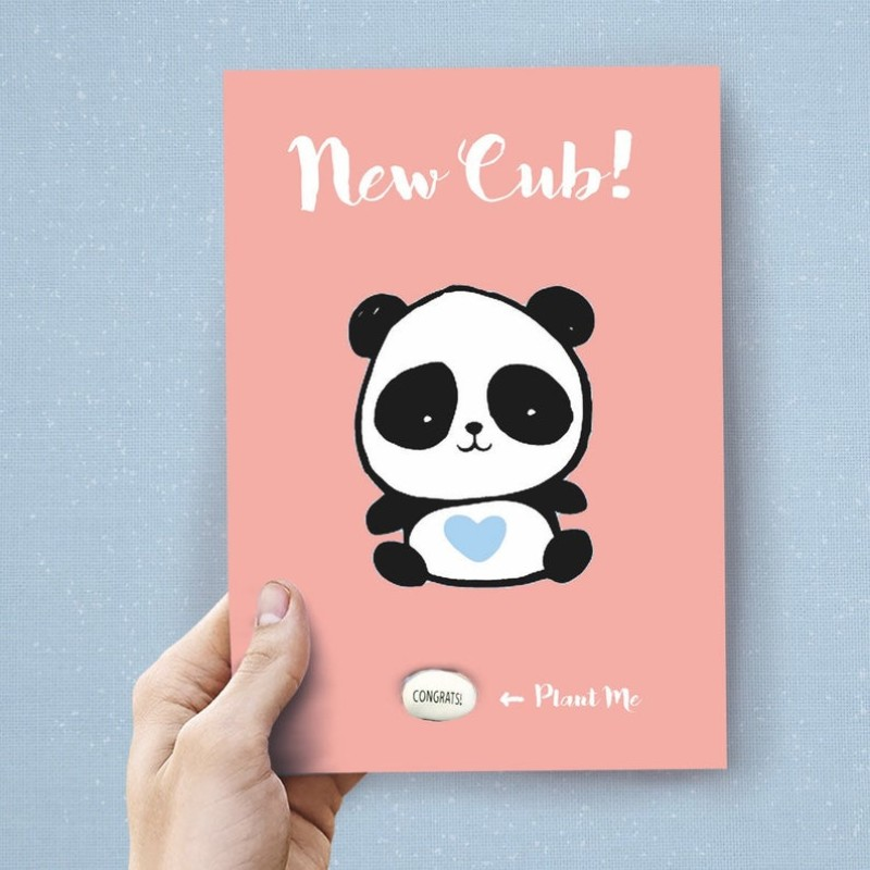New Cub (PINK) Card by Lucy and Lolly