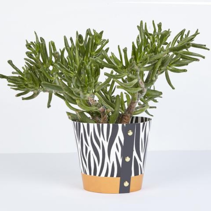 Medium Plant Pot Cover by Studio Wald