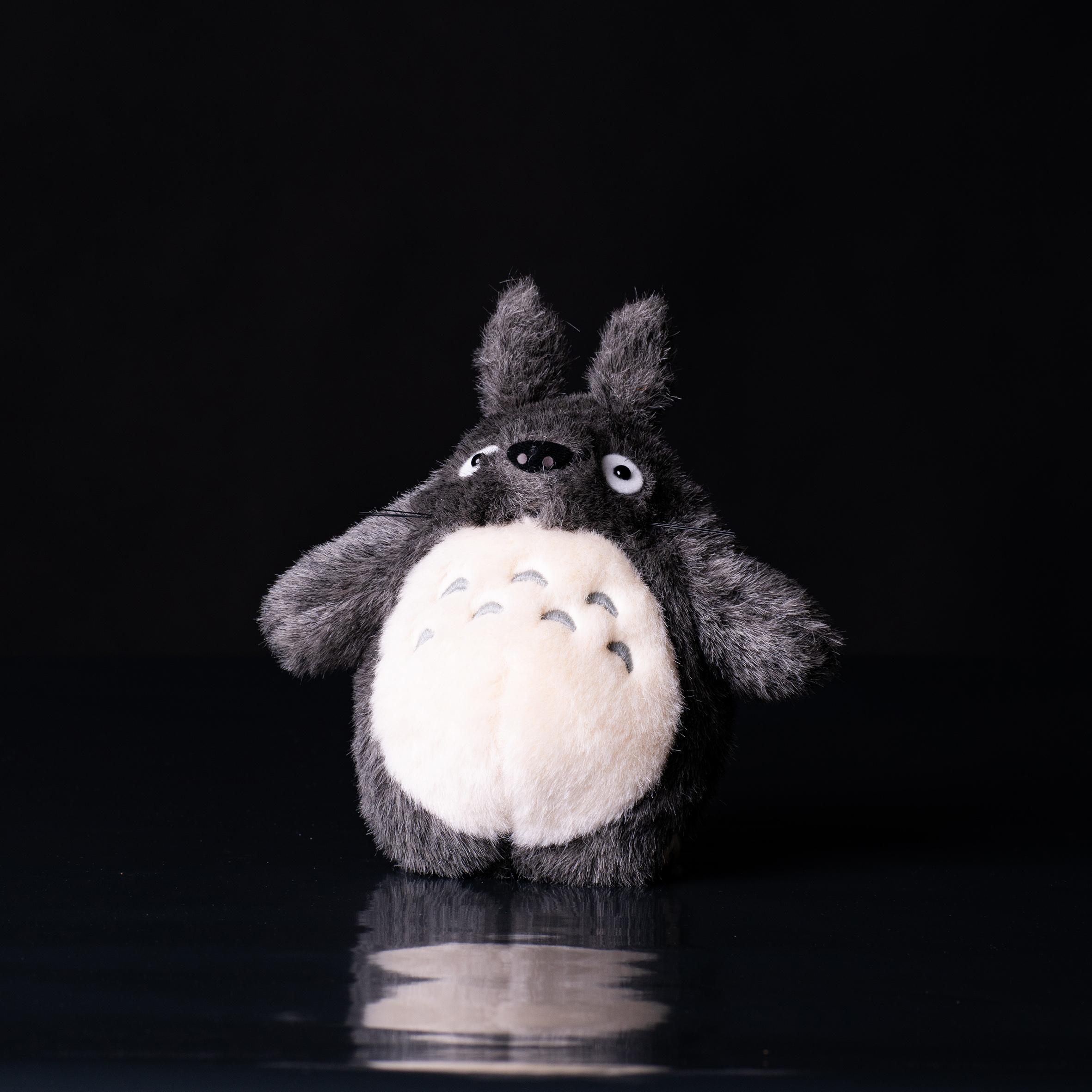 Iso Totoro
