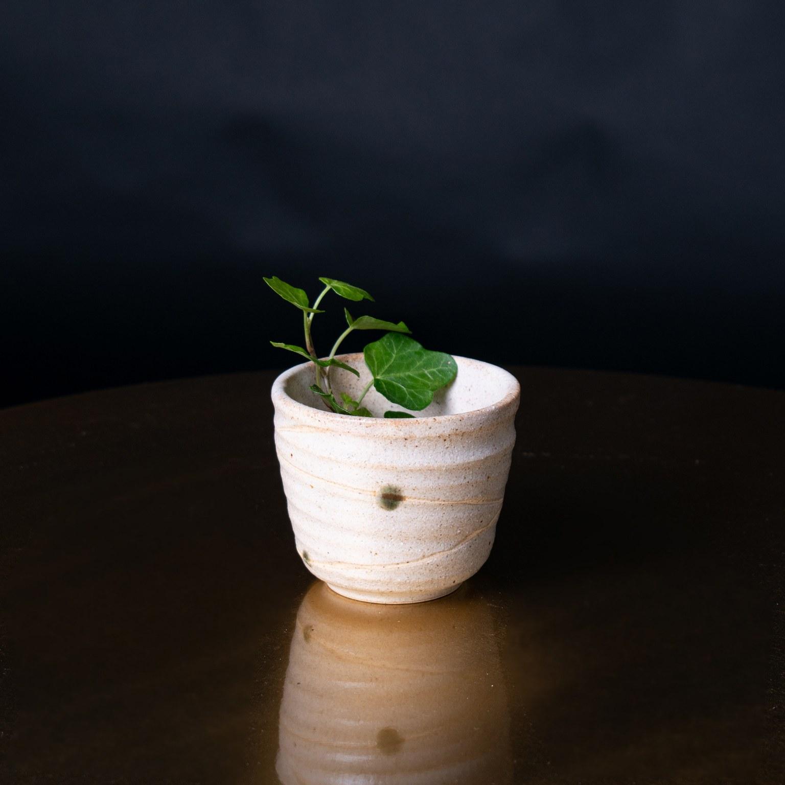 Teekuppi vihreä pilkku