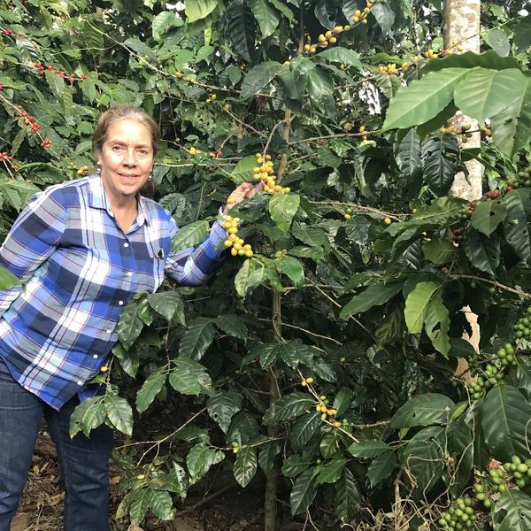 Finca Nejapa, El Salvador   250g