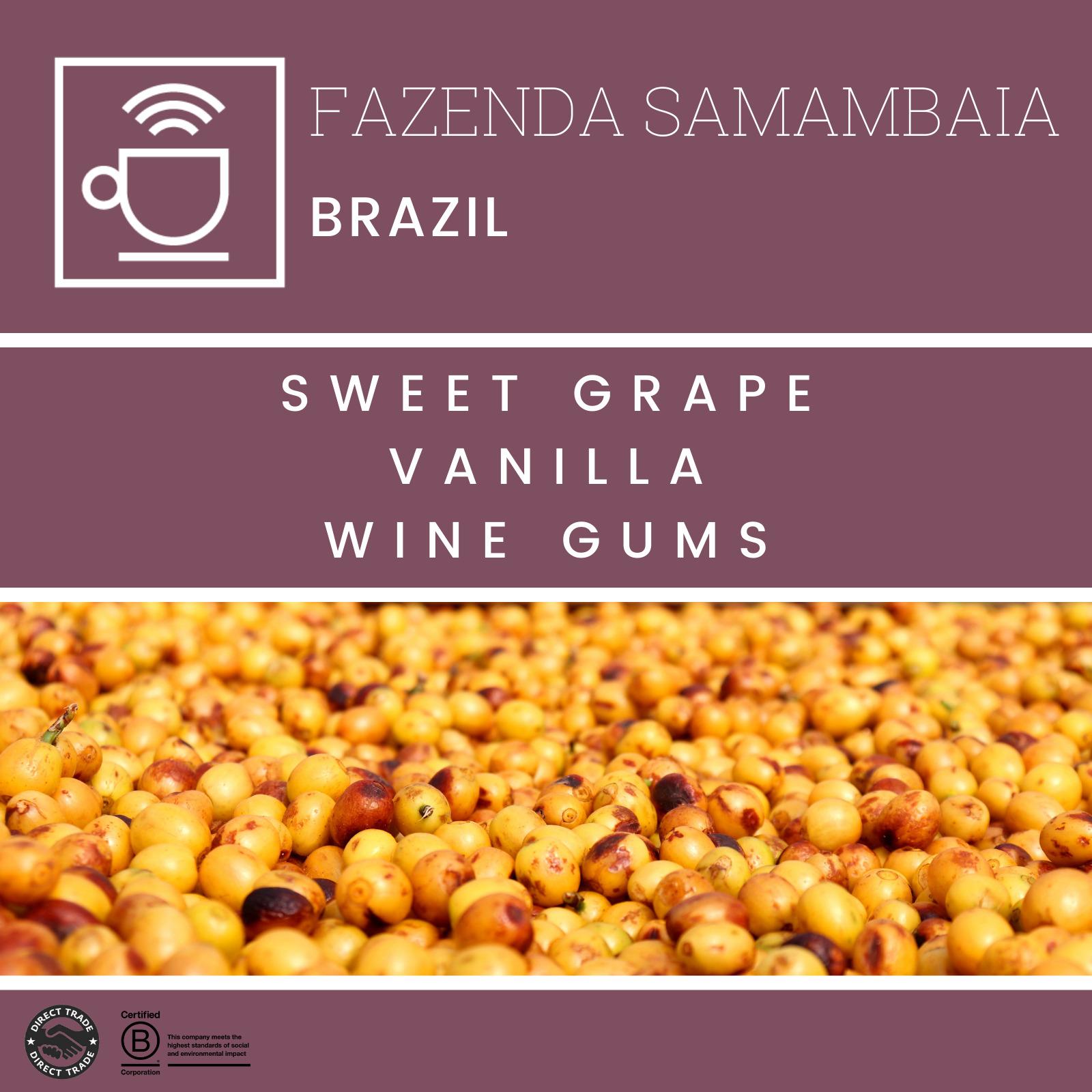 Fazenda Samambaia anaerobic - Brasil, Clever Coffee | 250g