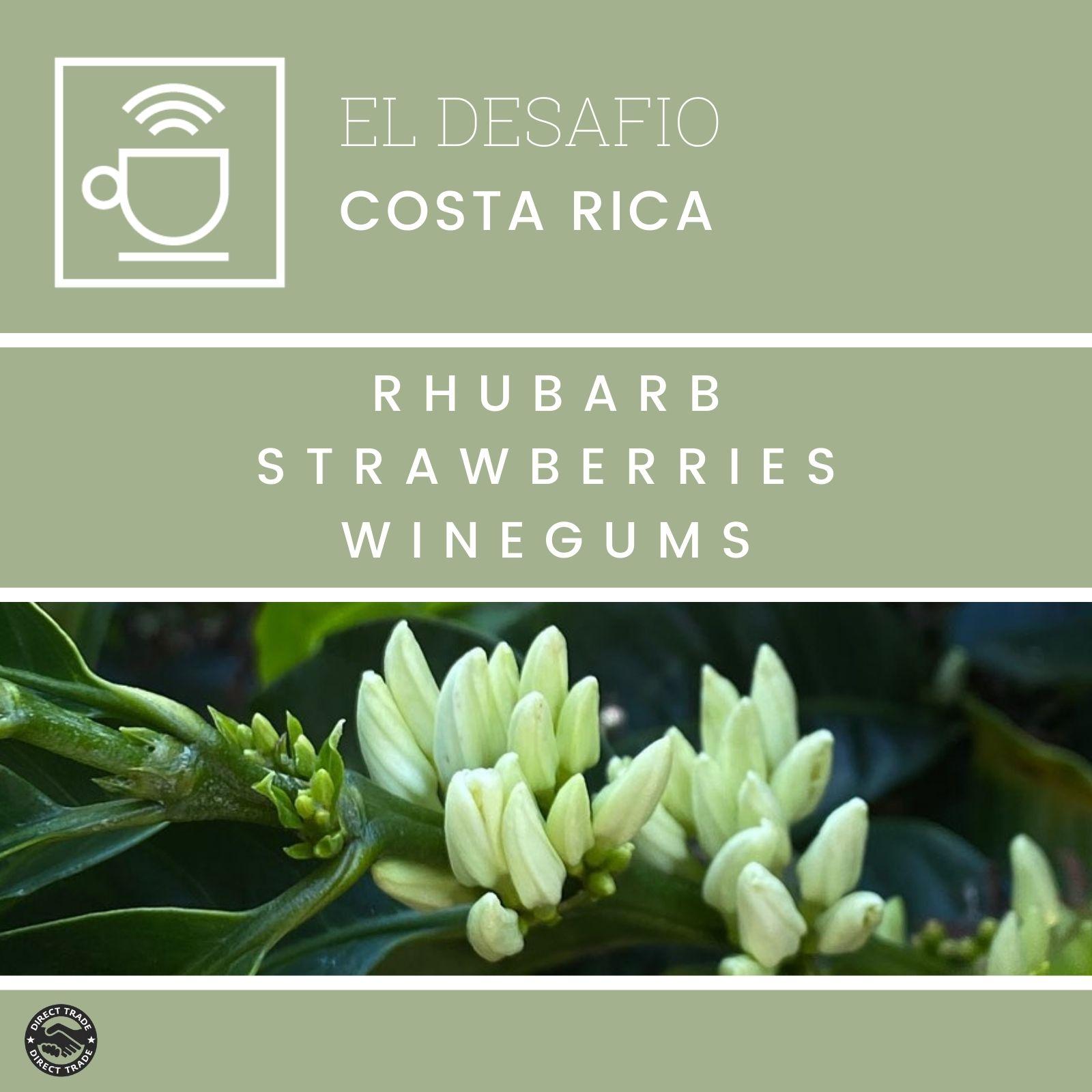 El Desafio natural - Costa Rica | 250g