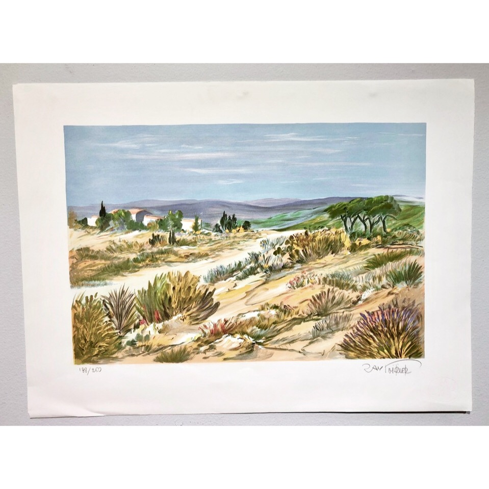 """""""No title"""" Lithograph by Ray Poirier. 76 x 56 cm"""