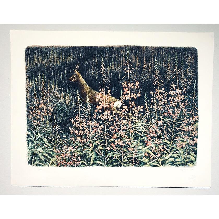 """Rådjuret"" Lithograph by Leif Liljeblad. 71,5 x 55 cm"