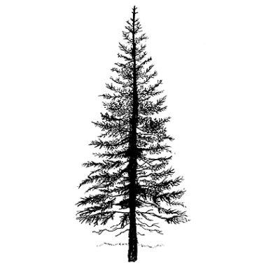 Stempel LAV094 Fir Tree 1