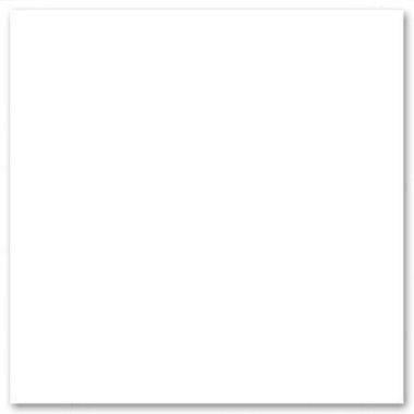 Bazzill Ark White 309001