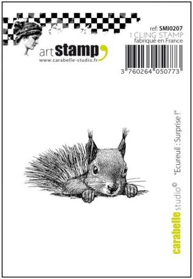 Stempel CS Ecureuil Surprise SMI0207