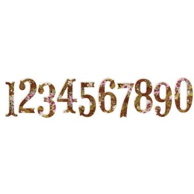 Dies SZ 658338