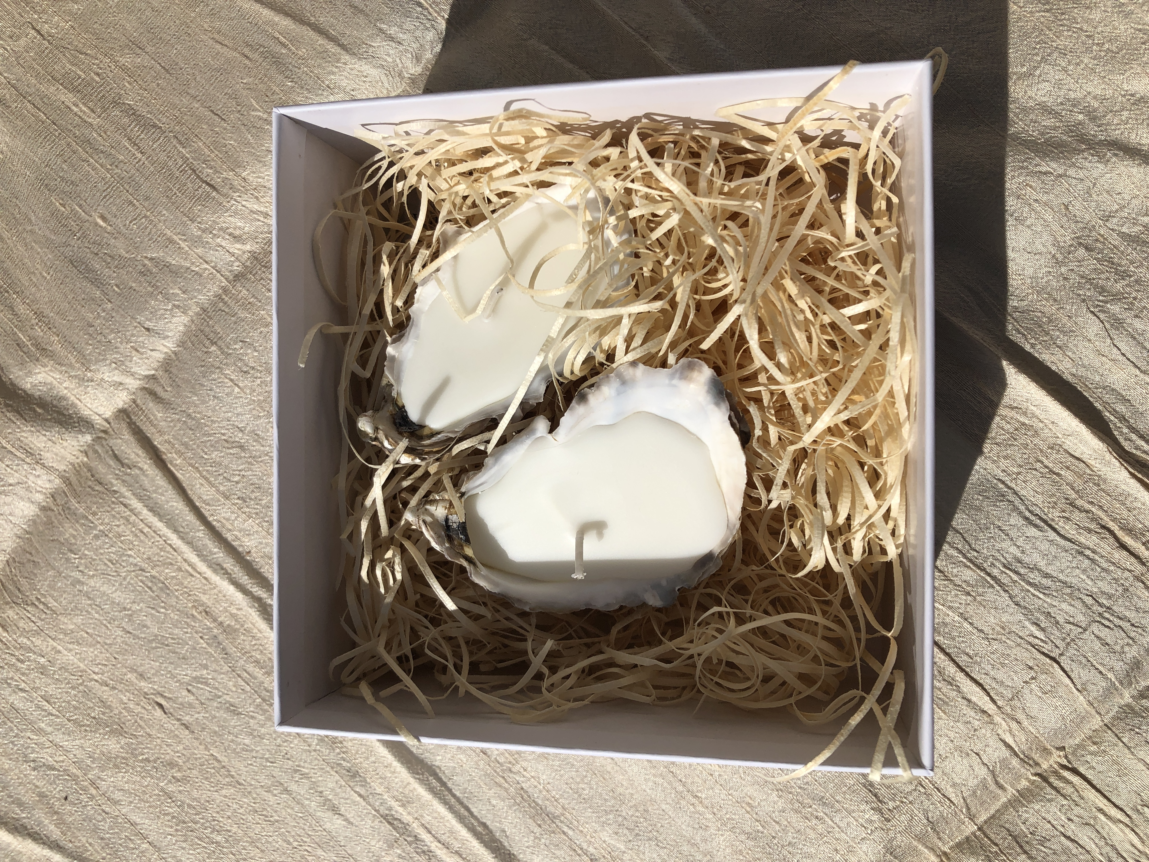 LIGA 2 oyster shell candles