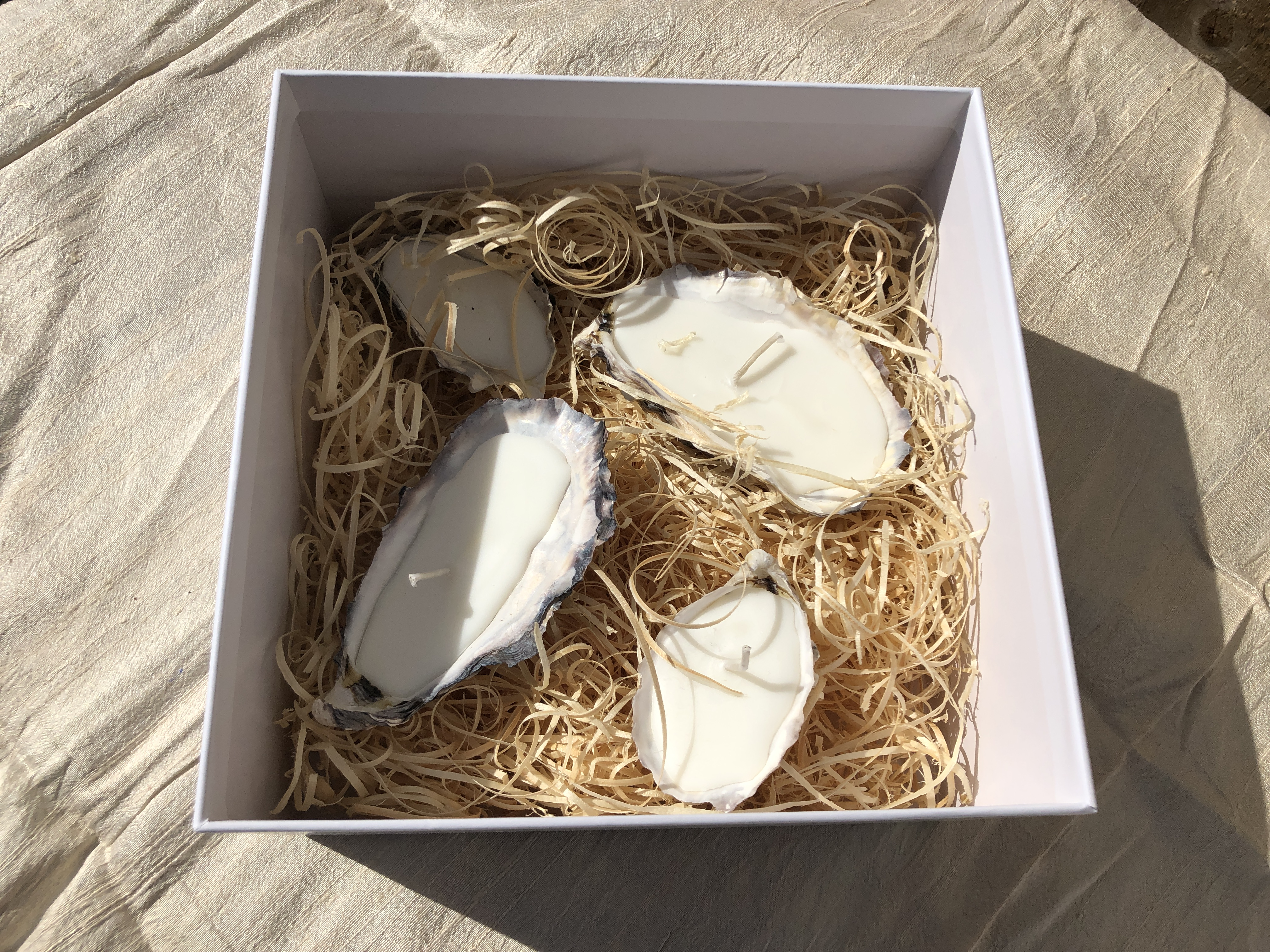 LIGA 4 oyster shell candles boxed