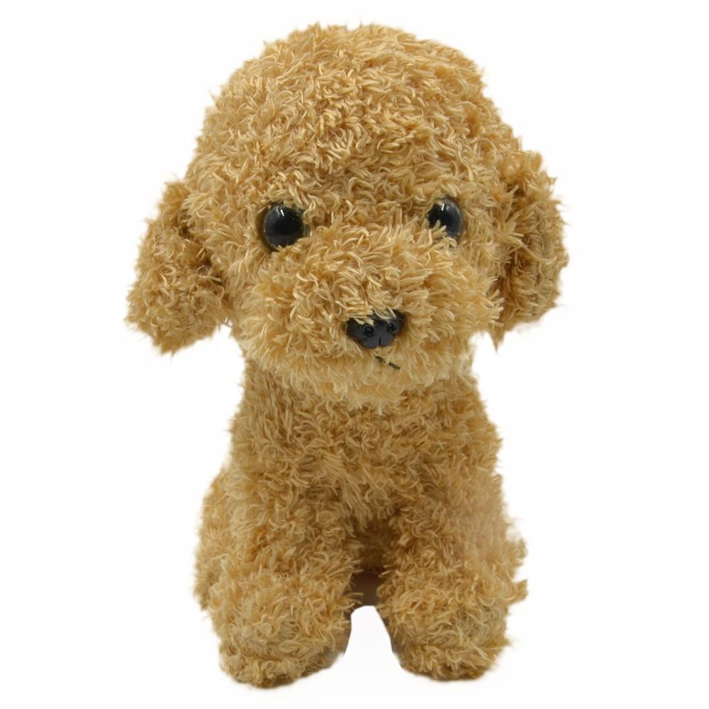 TEDDY BEAR POODLE