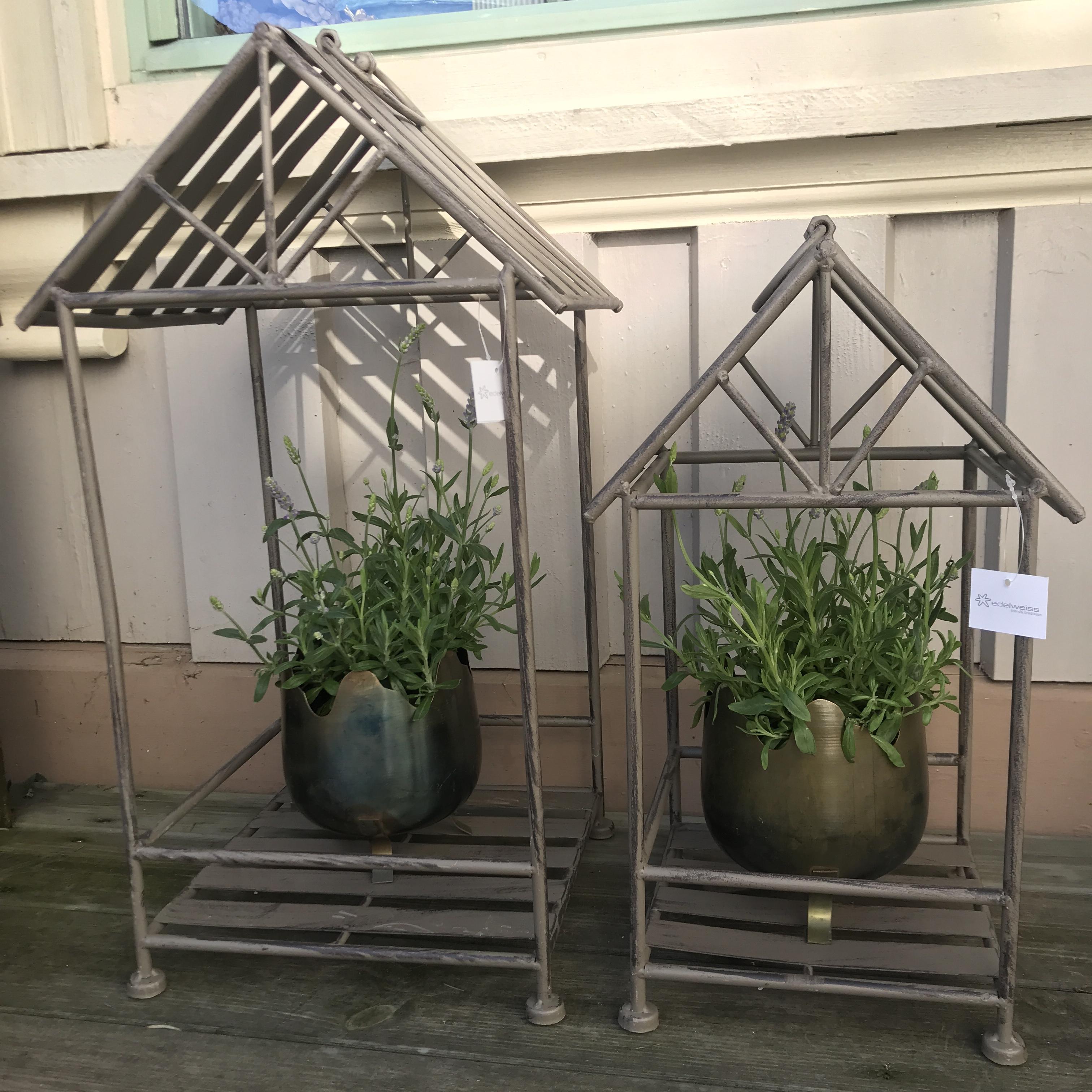 Wilfred : plantehus