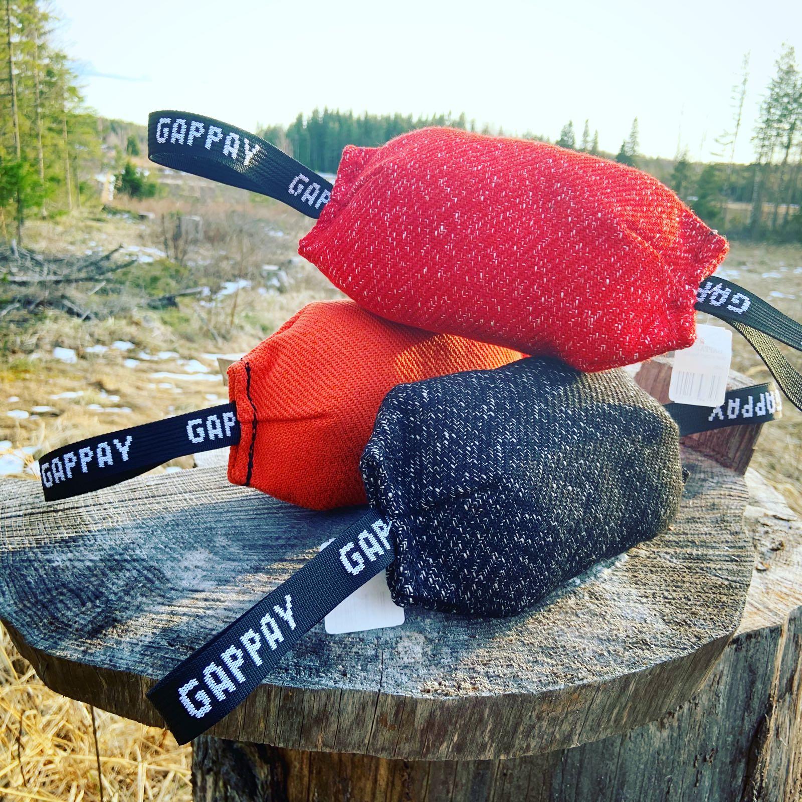 Gappay Rugby