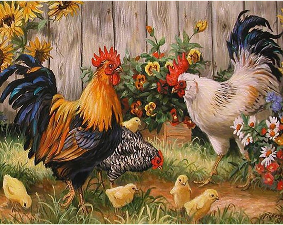 Hønsegården 48x38 cm