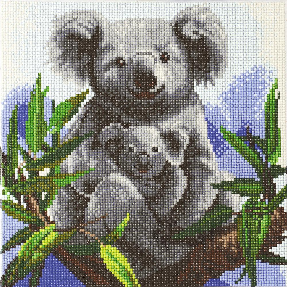 Crystal Art på ramme 30x30 cm: Sød koala