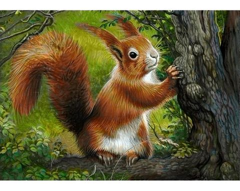 Egern 38x27 cm