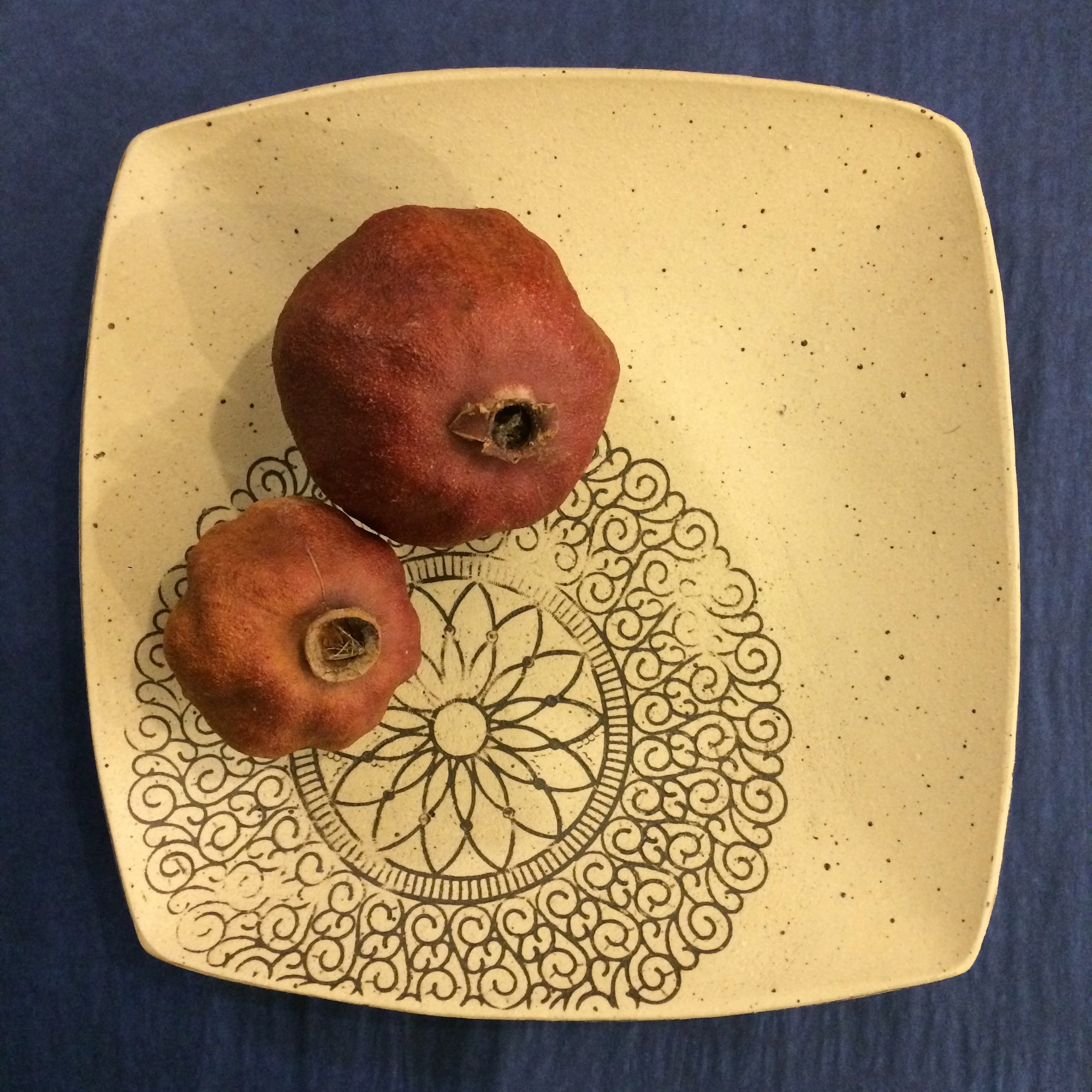 Square Stoneware Platter by Fiona Veacock - Sale!