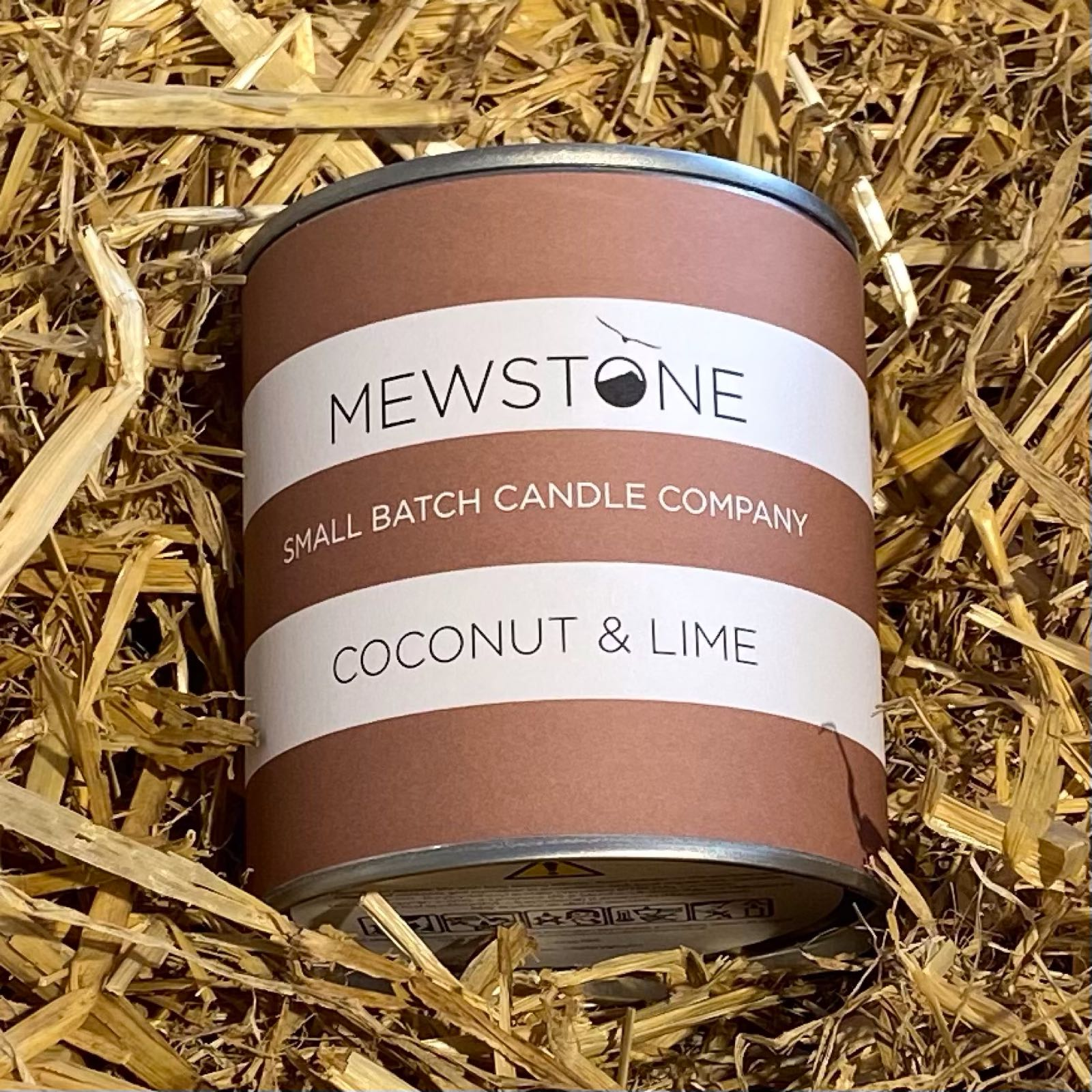 Coconut & Lime Paint Tin Candle