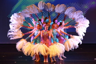 DRONFIELD DANCE AND THEATRE ACADEMY LIMITED