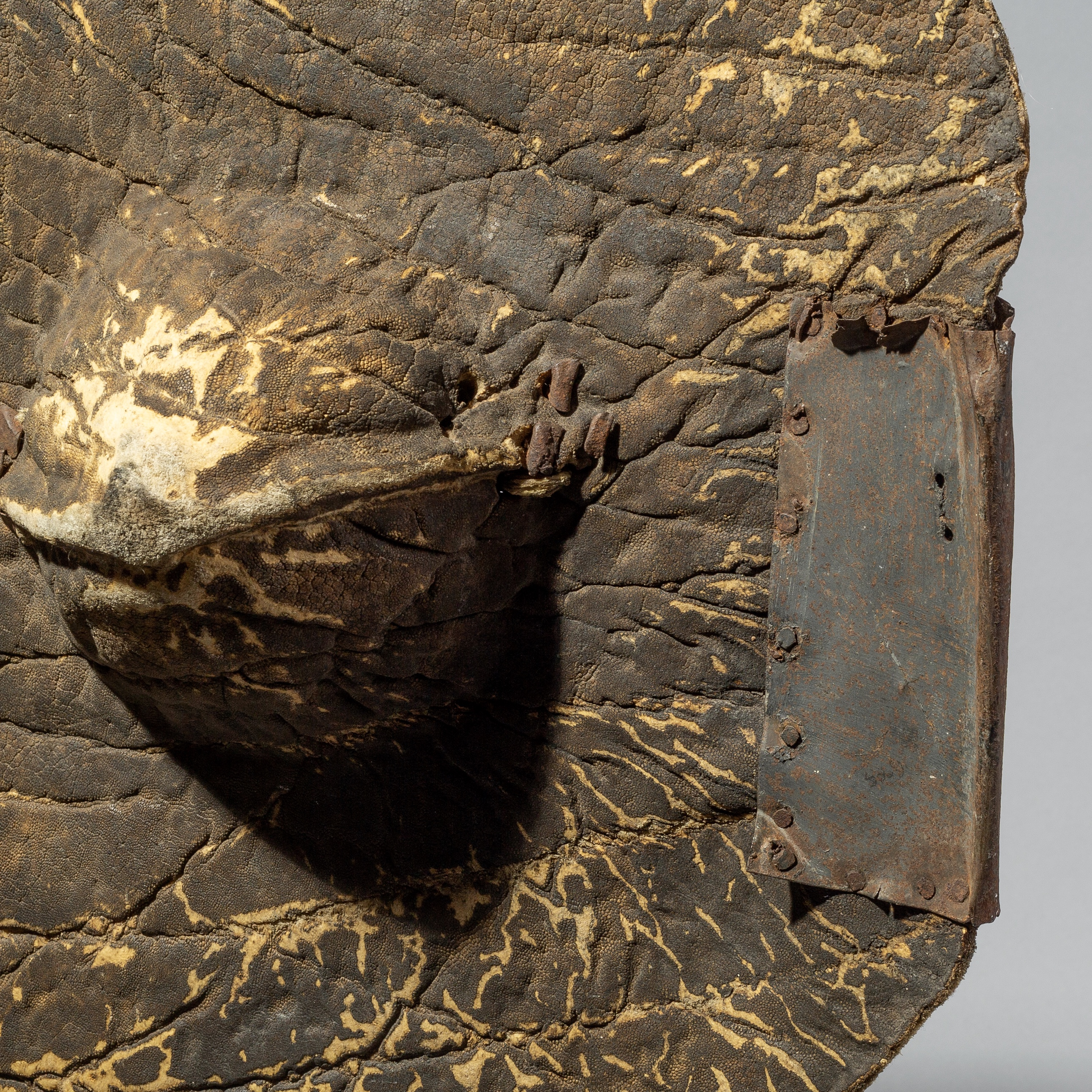 AN AMAZINGLY TEXTURAL BEDJA LEATHER SHIELD FROM SUDAN ( No 403 )