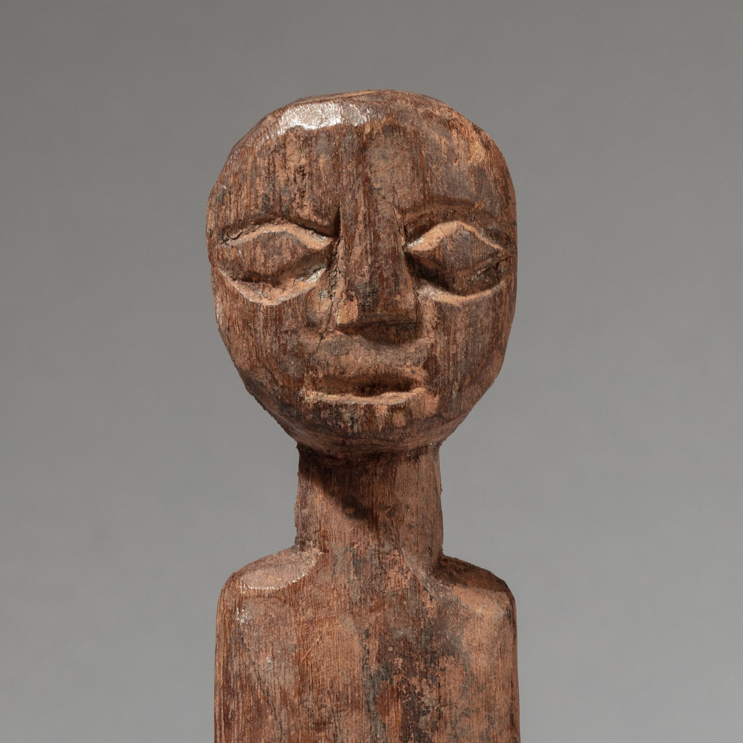 A MOON FACED ADAN ANCESTOR FIGURE, GHANA ( No 3398 )