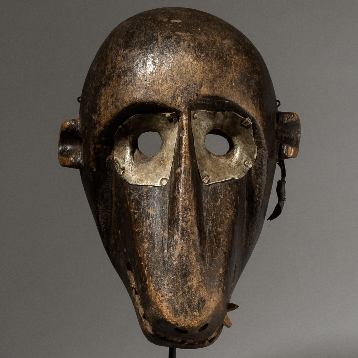 A MAGNIFICENT, MONKEY MASK WITH METAL EYES +REAL TEETH, MALINKE TRIBE OF MALI, W AFRICA ( No 4031)