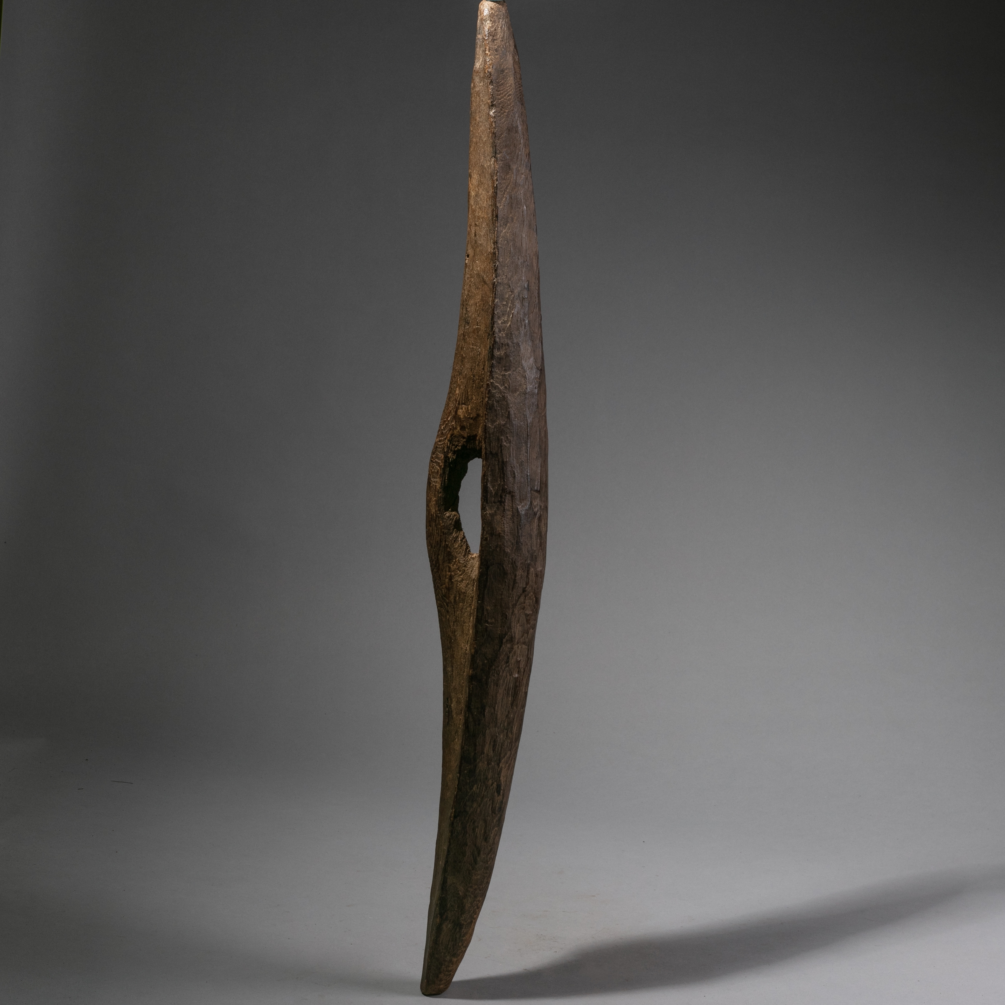 AN ELEMENTAL WOODEN SHIELD FROM THE SHI TRIBE UGANDA ( No 1018 )