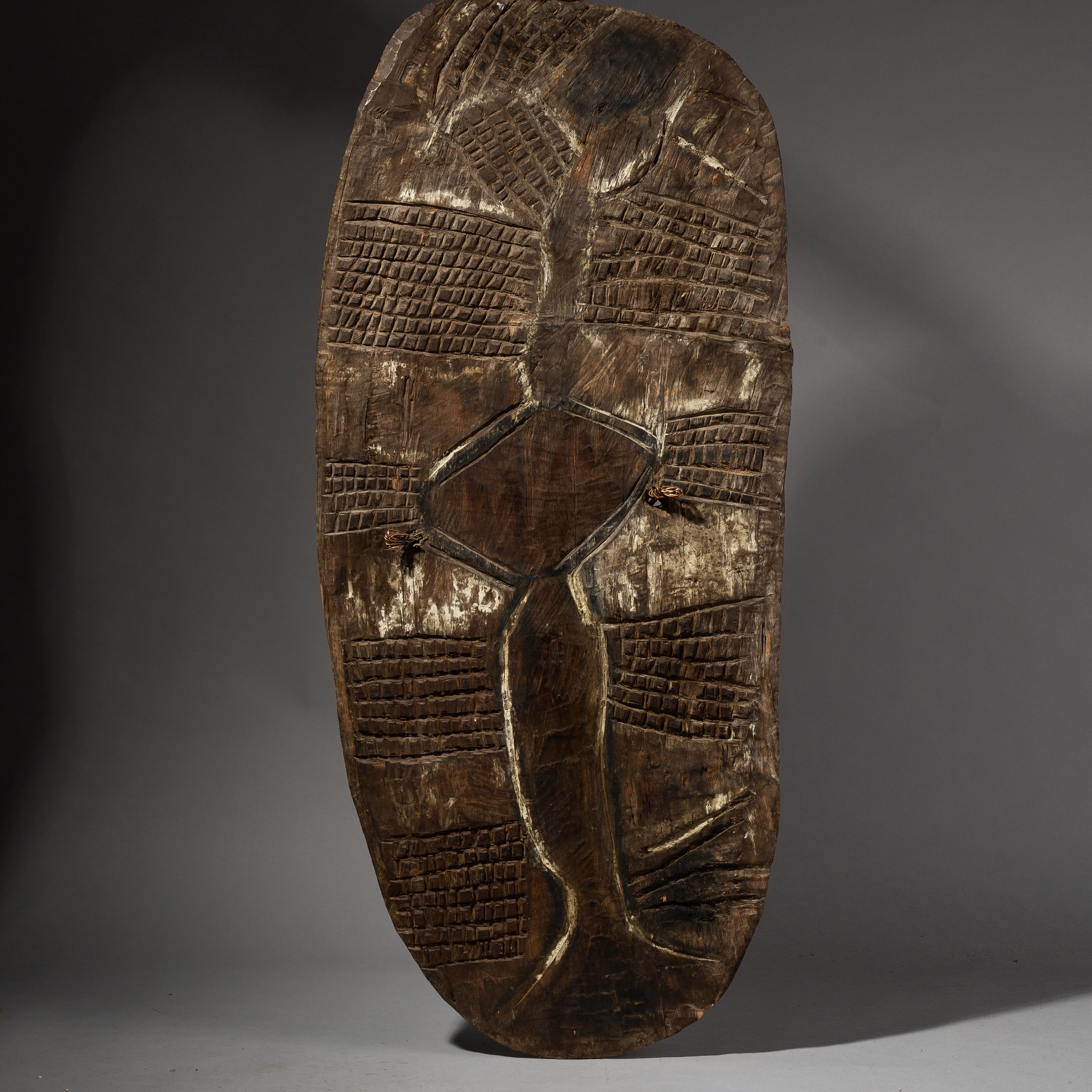 A LARGE EARTHY PIGMENT WOODEN SHIELD FROM PNG ( No 2048 )