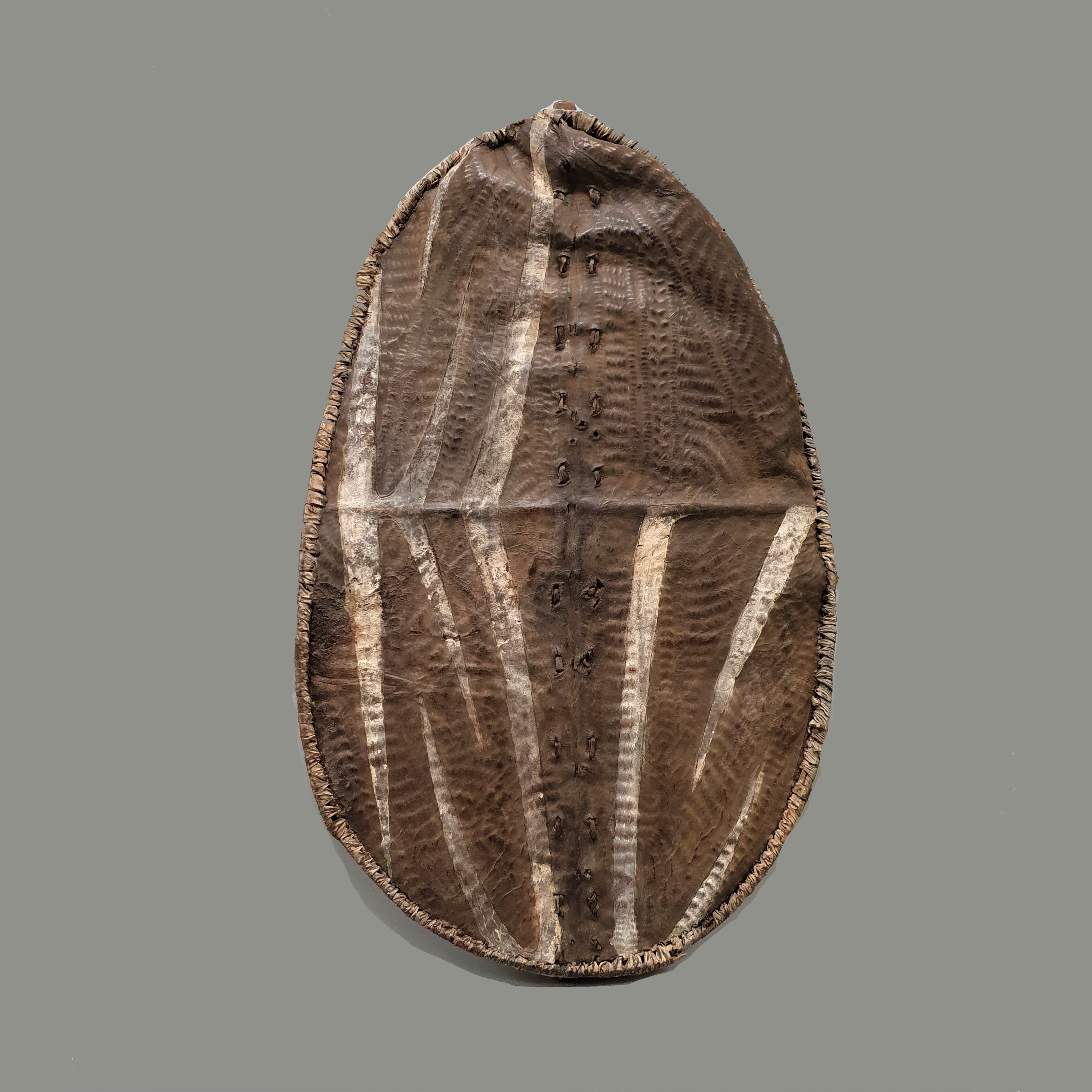 SD AN EMBOSSED LUO SHIELD FROM KENYA ( No 350 )